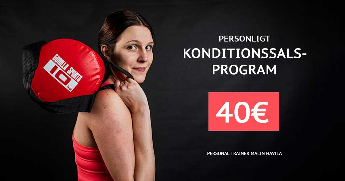 Konditionssalsprogram 40€